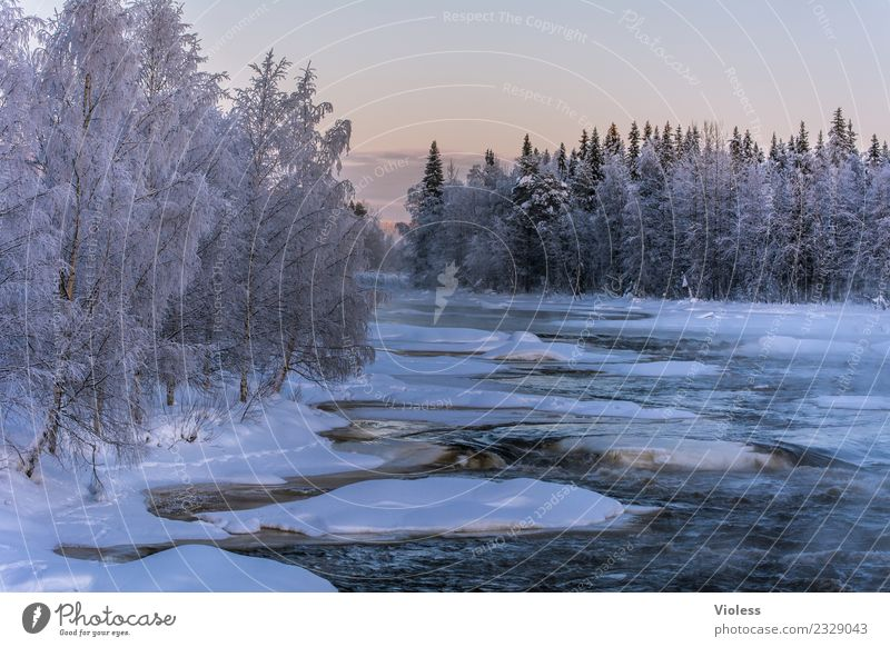 -28° II Umwelt Natur Landschaft Wasser Sonnenaufgang Sonnenuntergang Winter Schnee Schneefall Flussufer Ferien & Urlaub & Reisen Coolness kalt Rovaniemi