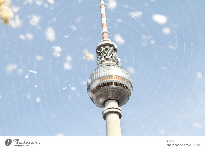 ENDLICH !!! ... Wolkenloser Himmel Frühling Sommer Hauptstadt Menschenleer Turm Bauwerk Architektur Sehenswürdigkeit Wahrzeichen Berliner Fernsehturm fliegen