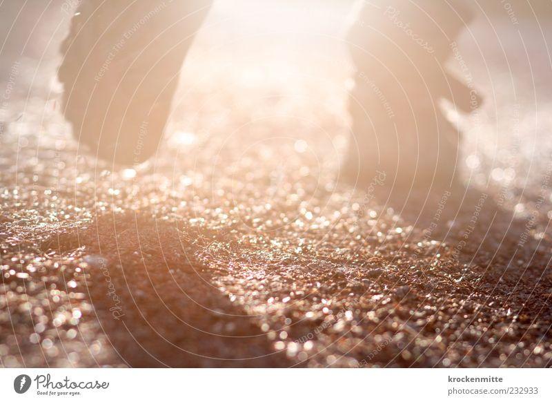 Out Of The Dark Fuß 1 Mensch Wege & Pfade Schuhe Stiefel leuchten wandern hell lichtvoll Waldspaziergang Waldboden Schuhsohle Spaziergang Schatten Sonnenlicht