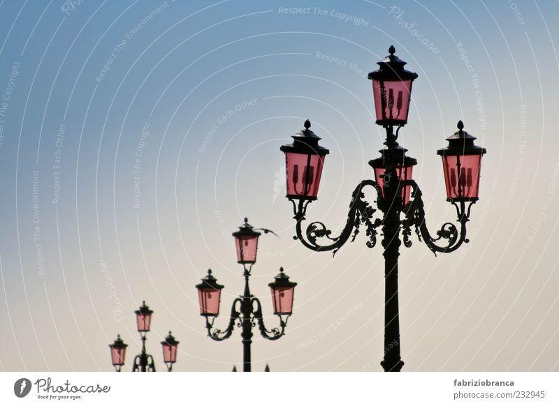Straßenlaterne Ferien & Urlaub & Reisen Sommer Himmel Wolkenloser Himmel Menschenleer blau rosa Farbfoto Außenaufnahme Abend Dämmerung Straßenbeleuchtung alt