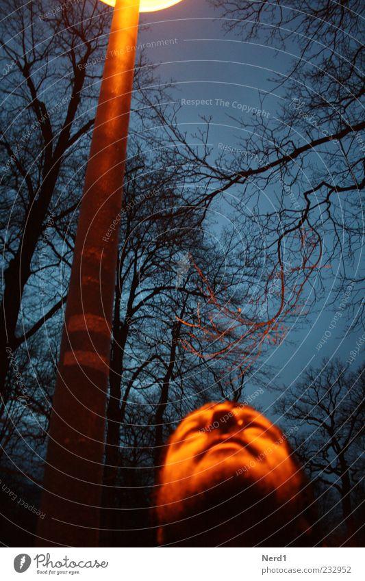 Laterne maskulin Mann Erwachsene 1 Mensch Pflanze Baum Park Bart warten Hoffnung Farbfoto Außenaufnahme Dämmerung Kunstlicht Schatten Kontrast Unschärfe