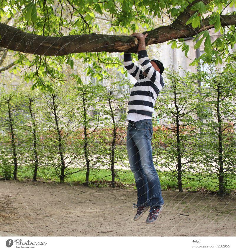 Mann in Jeans und gestreiftem Pulli macht Klimmzüge an einem dicken Ast Leben Freizeit & Hobby Fitness Sport-Training Mensch maskulin Erwachsene 1 45-60 Jahre