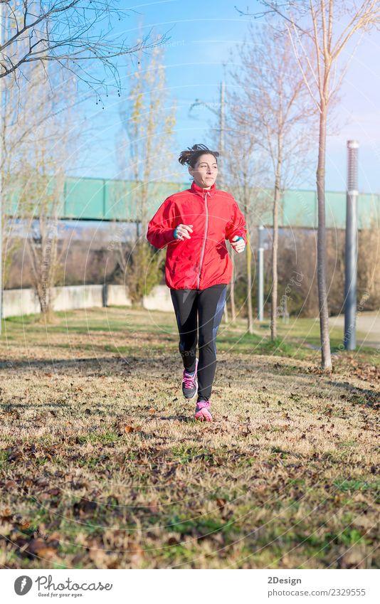 Läuferin beim Joggen im Park Lifestyle Freude Glück schön sportlich Fitness Leben Erholung Freizeit & Hobby Winter Sport Leichtathletik Sportler