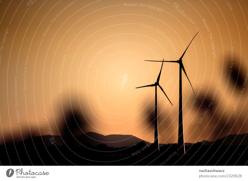 Windmühlen beim Sonnenuntergang Technik & Technologie Energiewirtschaft Erneuerbare Energie Windkraftanlage Windmühlenflügel Umwelt Landschaft Klima Hügel