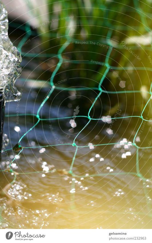 Fischernetz blau Wasser grün Gras Frühling glänzend Schönes Wetter Zaun Schilfrohr Teich sprudelnd Schlaufe Pumpe Wasserspiegelung