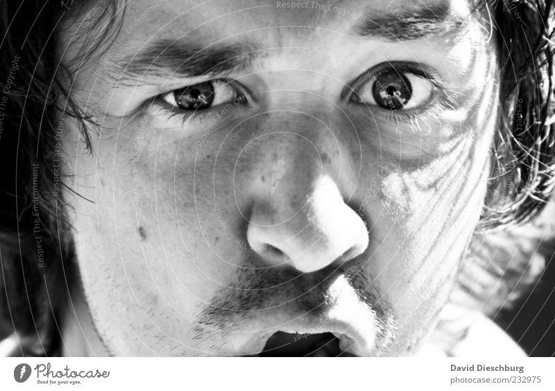 Achtung bissig & verrückt!!! Mensch Jugendliche Erwachsene Gesicht Auge Leben Haare & Frisuren Kopf Junger Mann Mund 18-30 Jahre Nase authentisch einzeln Lippen