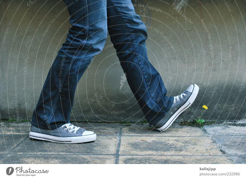 ökologischer fußabdruck Mensch Mann Natur Pflanze Blume Erwachsene Umwelt Leben Bewegung Schuhe laufen Beton maskulin außergewöhnlich Löwenzahn