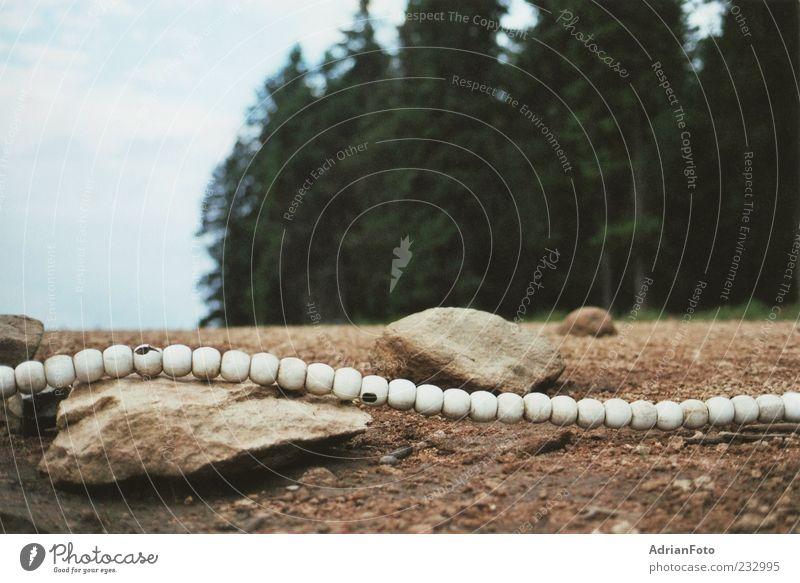 Perlenkette Himmel Natur Baum Pflanze Wald Berge u. Gebirge Stein träumen Erde Felsen Ordnung Perspektive Idylle Kreativität geheimnisvoll Seeufer