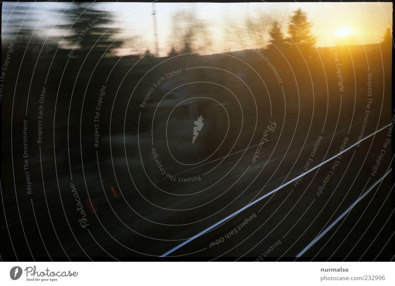 der Sonne entgegen Natur Ferien & Urlaub & Reisen Sonne Sommer Landschaft Freiheit Stimmung glänzend Ausflug Klima Verkehr Eisenbahn fahren Schönes Wetter Gleise Verkehrswege