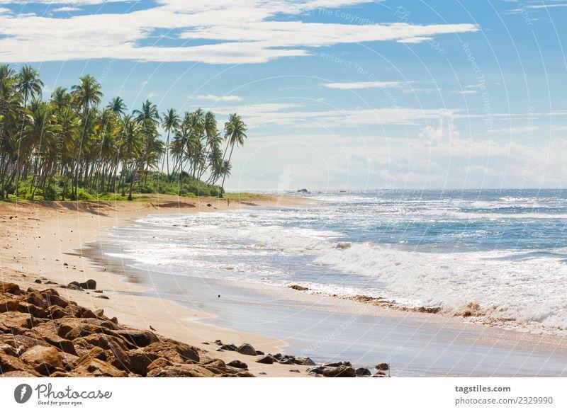 Sri Lanka, Rathgama - Landschaft von Rajgama aka Rathgama Asien Bucht Strand Küste Horizont Idylle erleuchten Insel Natur Meer Palme friedlich Postkarte