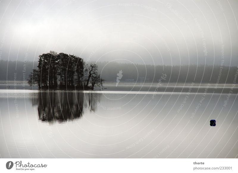 Dawn Himmel Wasser Baum Sommer Erholung Landschaft grau Nebel Insel Seeufer Wasseroberfläche Dunst schlechtes Wetter Wasserspiegelung