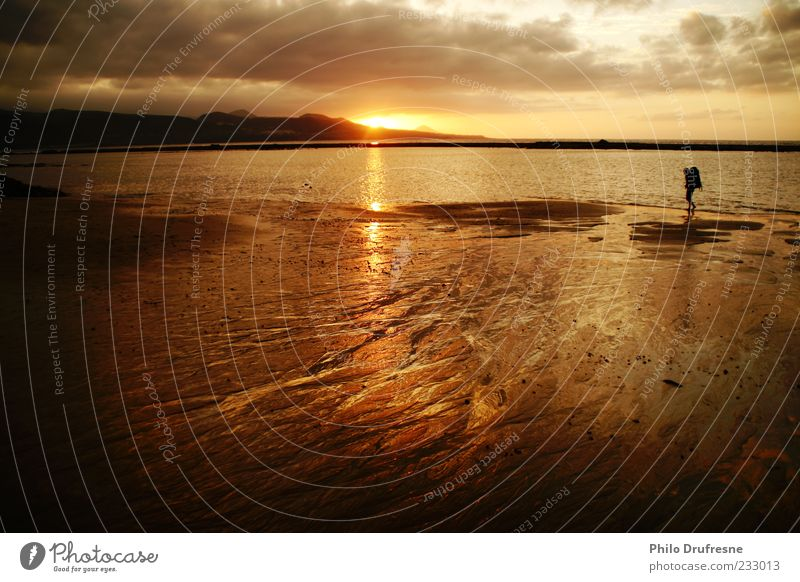 ferne Himmel Wasser Ferien & Urlaub & Reisen Sonne Meer Strand Einsamkeit Ferne Freiheit Sand Küste Horizont laufen Schönes Wetter Tourist Sonnenaufgang