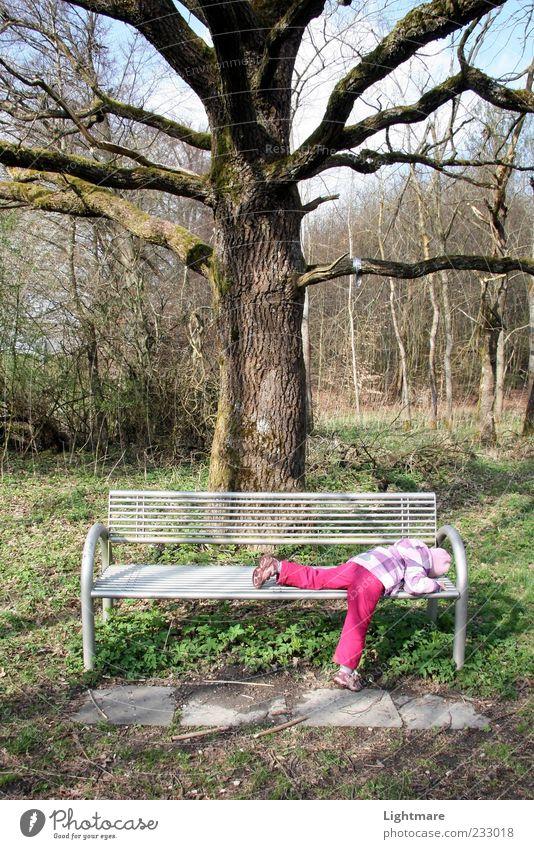 Tired by Nature Mensch Kind grün Baum Pflanze Mädchen ruhig Wald Kindheit rosa liegen schlafen Bank Schönes Wetter Müdigkeit