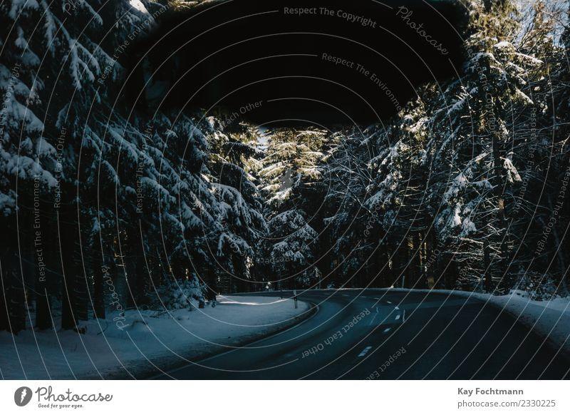 Winterliche Straße im Thüringer Wald Lifestyle Ferien & Urlaub & Reisen Tourismus Ausflug Abenteuer Schnee Winterurlaub Umwelt Natur Landschaft Pflanze Baum