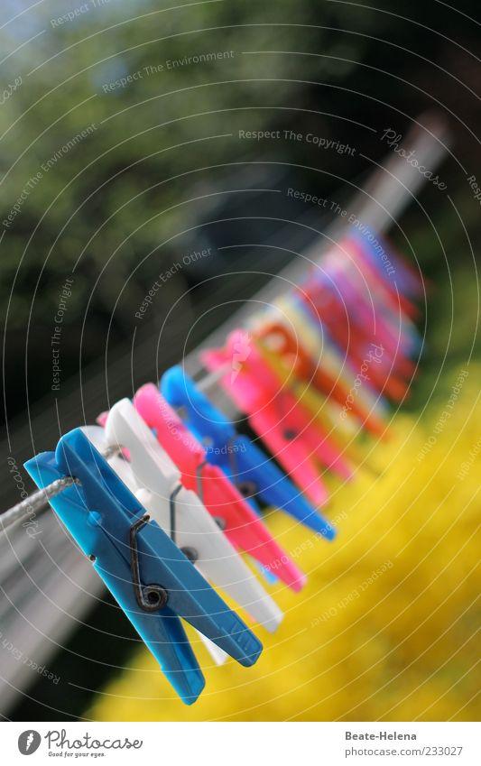 Bereit zum Aufhängen blau gelb rot weiß Wäscheleine Wäscheklammern Sonnenlicht Farbfoto Außenaufnahme Unschärfe Menschenleer viele aufgereiht Textfreiraum oben
