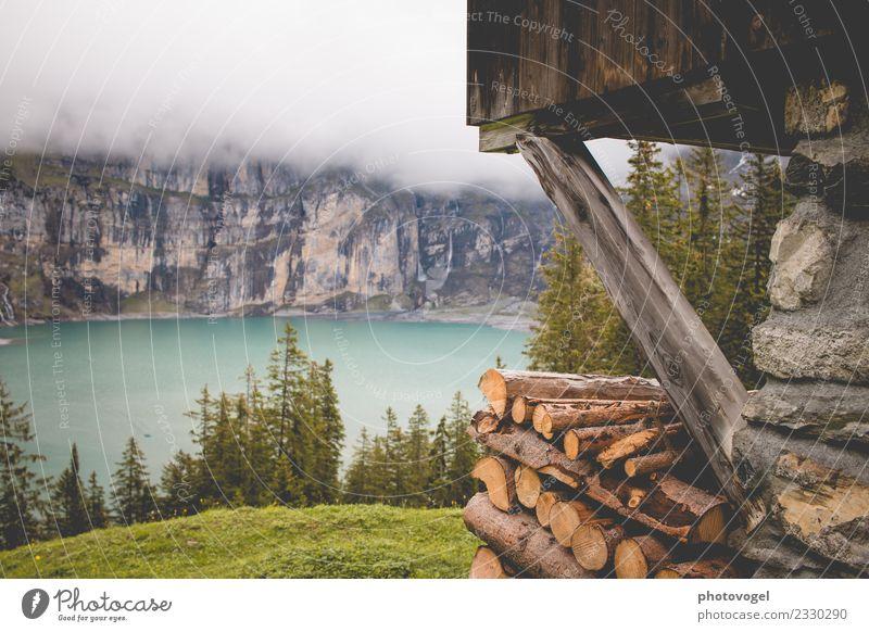 Seeblick Umwelt Natur Landschaft Wasser Sommer Nebel Pflanze Baum Gras Wald Felsen Berge u. Gebirge Oeschinensee schön blau braun grün Gefühle Freude Glück