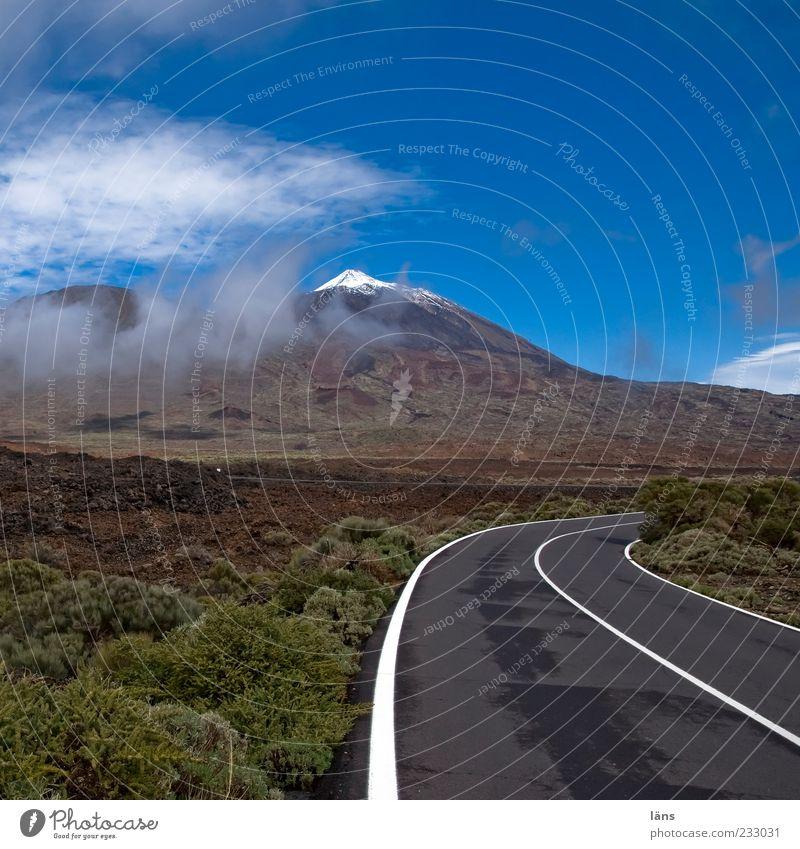 zum Gipfel Berge u. Gebirge Natur Landschaft Urelemente Himmel Wolken Schönes Wetter Sträucher Schneebedeckte Gipfel Vulkan Straße Beginn einzigartig Teide