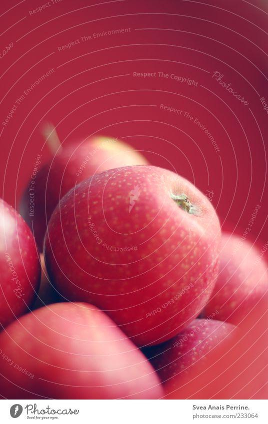 Apfel. rot Ernährung Gesundheit Frucht natürlich frisch rund Apfel Stengel Appetit & Hunger lecker Bioprodukte Mahlzeit Diät Vitamin saftig