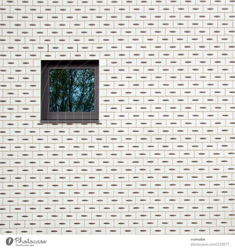 Ouverture weiß Haus Fenster Wand Architektur Stein Mauer Gebäude Glas Autofenster Fassade Ordnung Bauwerk Fensterscheibe Strukturen & Formen Mauerstein