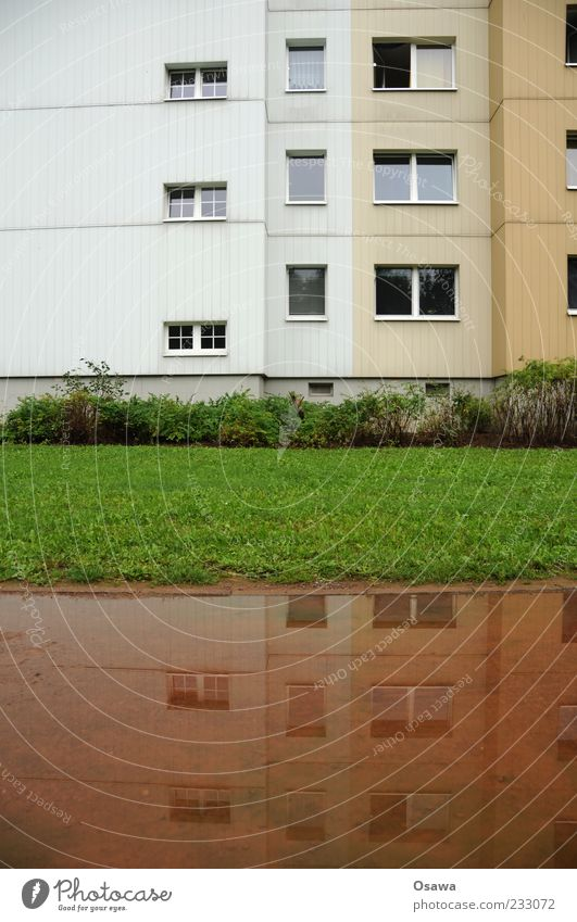 Wohnen am Wasser Wohnung Haus Gebäude Architektur Fassade Fenster Plattenbau DDR Hohenschönhausen Rasen Pfütze Reflexion & Spiegelung trüb Regen Regenwasser
