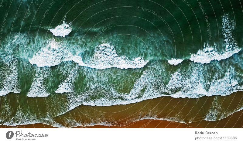 Natur Ferien & Urlaub & Reisen Sommer blau Farbe grün Wasser Landschaft Meer Strand Wärme Umwelt Küste braun orange Sand