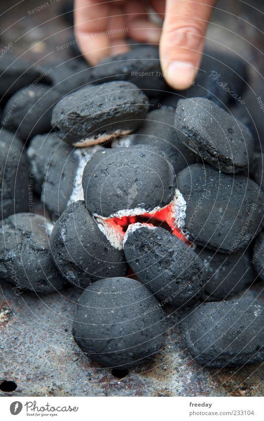 200°C - Alles im Griff! Freizeit & Hobby Haut Hand Finger Umwelt Feuer Grill heiß grau rot schwarz gefährlich Grillkohle Glut brennen Farbfoto mehrfarbig