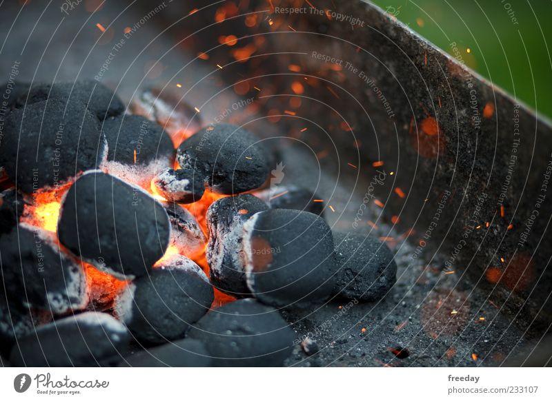 Kernexplosion! Freizeit & Hobby Feuer Grill Holz Rauch leuchten heiß gefährlich Grillkohle Kohle Explosion Funken rot Glut Farbfoto mehrfarbig Außenaufnahme