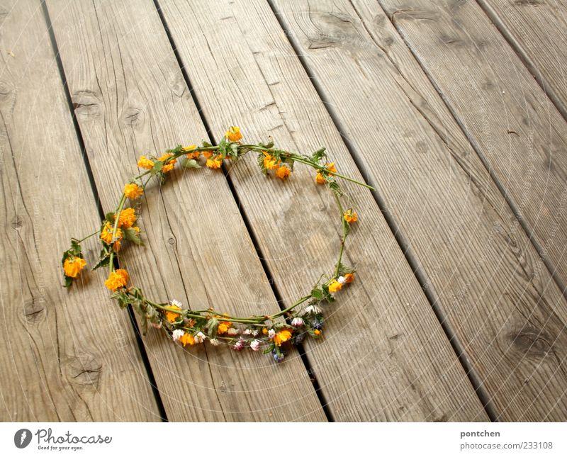 Blumenmädchen Natur weiß grün Pflanze Sommer gelb Holz Frühling liegen ästhetisch Boden Kitsch Schmuck Gänseblümchen Tradition