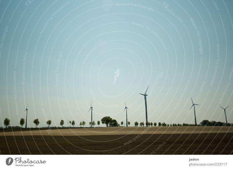 energiefeld braun Kraft Feld Energiewirtschaft Klima mehrere ästhetisch Wandel & Veränderung Windkraftanlage drehen Allee innovativ Windrad rotieren Rotor