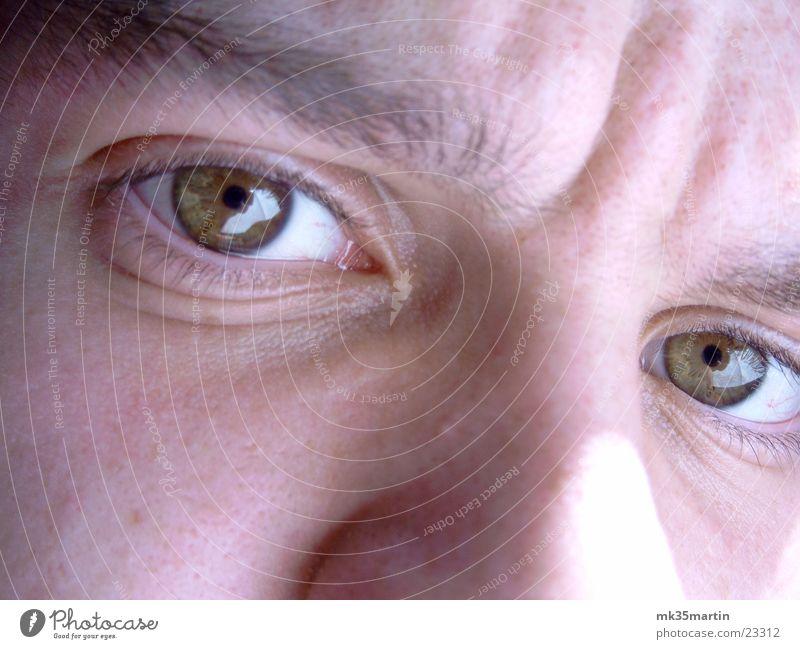 Was guckst Du? Mann Gesicht Auge braun Nase grimmig