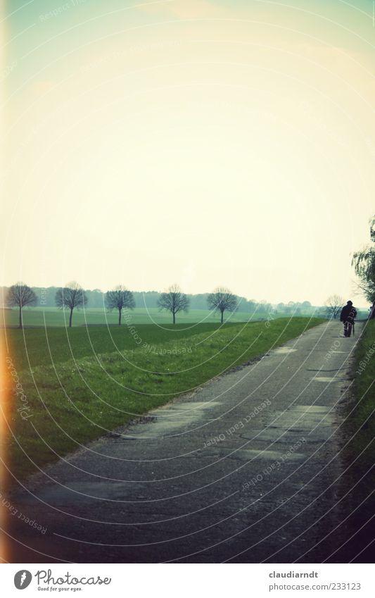 Unterwegs Mensch Natur Mann Baum Einsamkeit Ferne Landschaft Wege & Pfade gehen maskulin Spaziergang Asphalt Spazierweg Spazierstock Blendeneffekt Retro-Farben