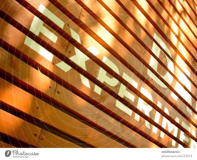 Darwin-Box Linie Architektur verrückt Fassade Schriftzeichen Streifen Holzbrett