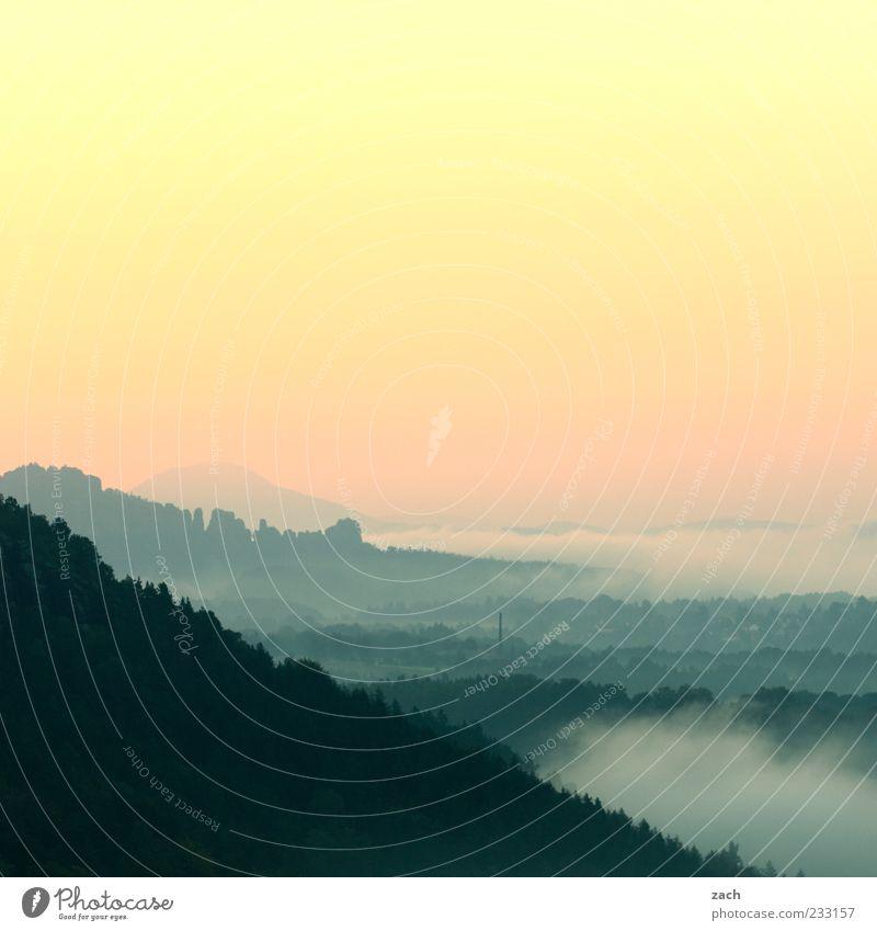Morgens in Sachsen Himmel Natur blau Baum ruhig Erholung Berge u. Gebirge Freiheit rosa Felsen Nebel außergewöhnlich Hügel Abenddämmerung Morgendämmerung Sachsen
