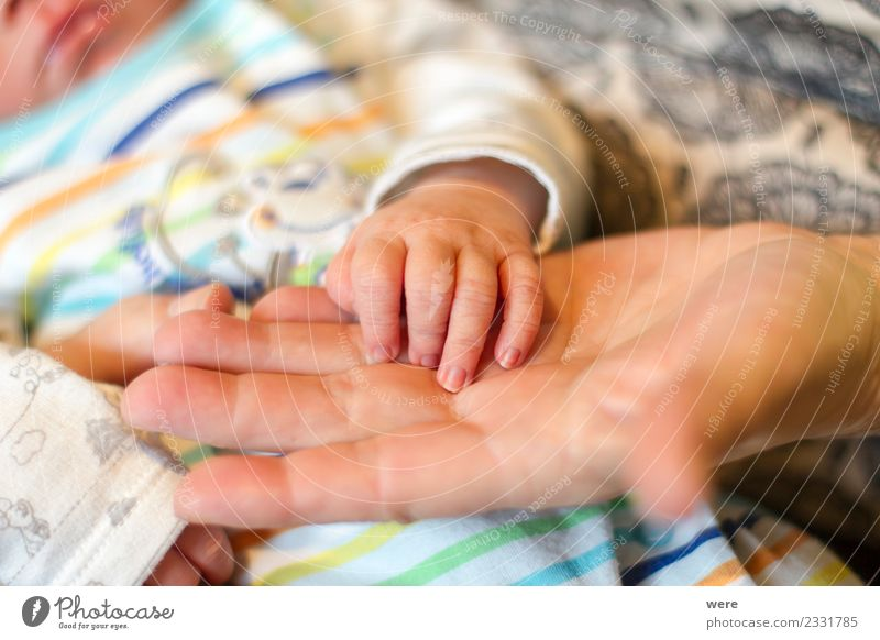 The hand of a newborn baby Mensch Hand Leben Liebe Wachstum Baby festhalten Verantwortung