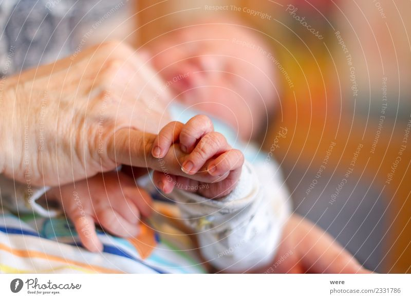 The hand of a newborn baby holds the finger of an adult Mensch Baby Hand Sicherheit Schutz Geborgenheit Shallow depth of field Sleep child clenched copy space