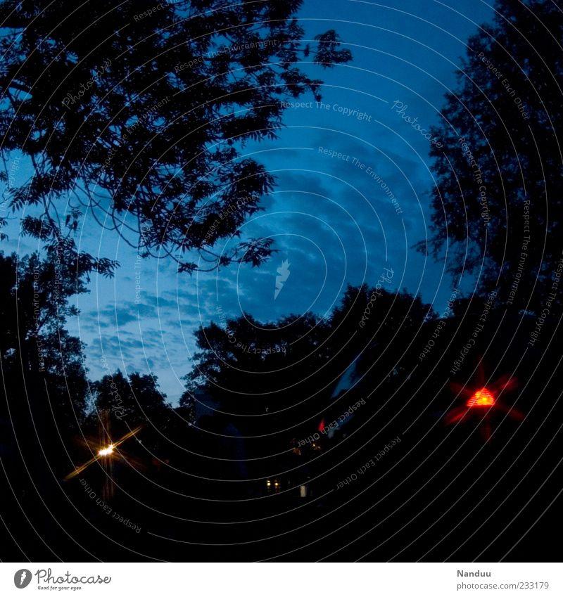 Nacht Himmel Baum Blatt dunkel PKW Beleuchtung Baumkrone Abenddämmerung Zweige u. Äste Rücklicht Wolkenhimmel Pflanze Dämmerung