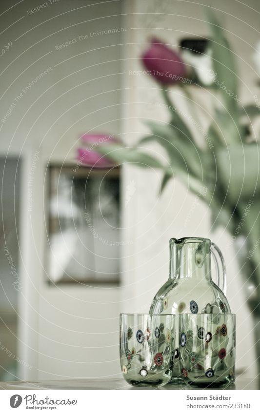 Ambiente Pflanze außergewöhnlich Glaskanne Tulpe Bild Blume Vase Theke Tür Warme Farbe Wasserglas Karaffen Häusliches Leben Dekoration & Verzierung gemütlich
