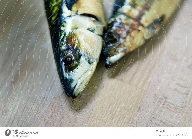 Kuscheln Tier Auge Tod Ernährung kalt Lebensmittel Kopf Fisch Holzbrett Maserung Schuppen Forelle Makrele Fischkopf Totes Tier