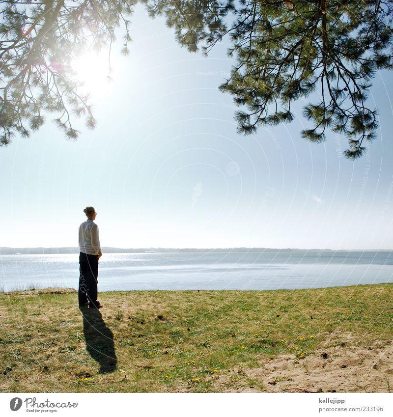 seaside Mensch Frau Erwachsene Leben 1 Umwelt Natur Landschaft Erde Wasser Himmel Sonne Klima Schönes Wetter Pflanze Baum Küste Seeufer Strand Ostsee Bekleidung