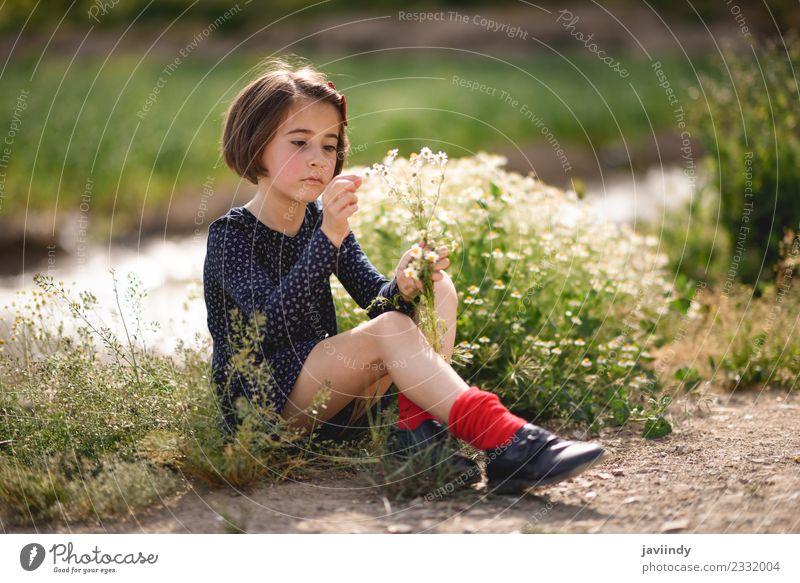 Kleines Mädchen sitzt auf einem Naturfeld mit Blumen in der Hand. Lifestyle Freude Glück schön Spielen Sommer Kind Mensch Baby Frau Erwachsene Kindheit 1