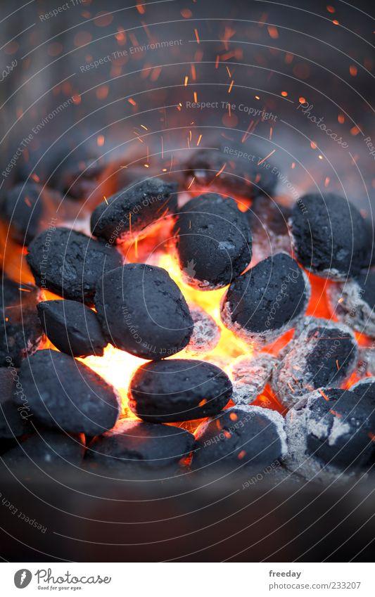 Außer kontrolle Umwelt Feuer Luft Sommer Wind Grill heiß rot schwarz Kraft Macht gefährlich Rauch Energie Grillkohle Glut Funken Grillen Farbfoto mehrfarbig