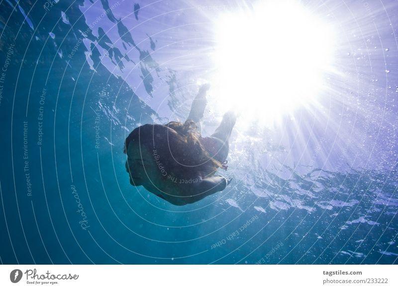LIQUID Mauritius tauchen Schwimmen & Baden Im Wasser treiben Kühlung Sommer Sonne Lichtstrahl Frau Leben abstrakt Meer Wasseroberfläche Unterwasseraufnahme