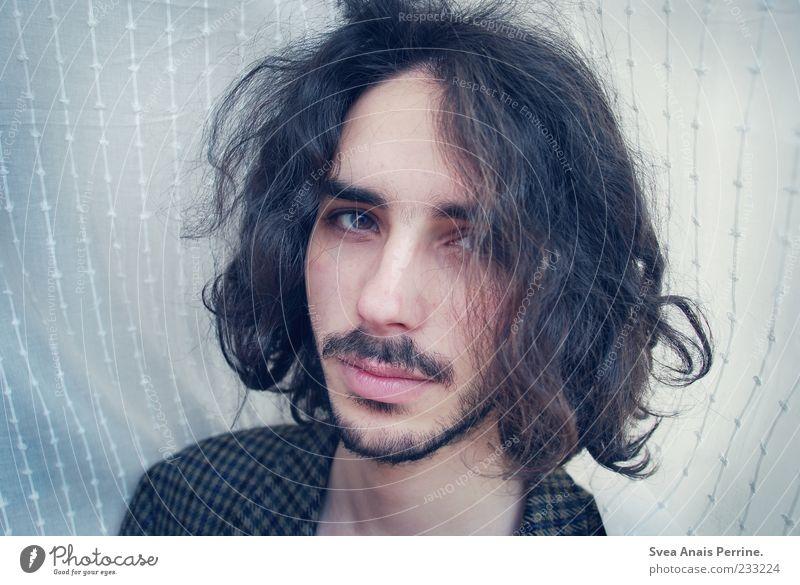 . maskulin Kopf Haare & Frisuren Gesicht 1 Mensch 18-30 Jahre Jugendliche Erwachsene schwarzhaarig langhaarig Locken schön Wuschelkopf dunkelhaarig Junger Mann