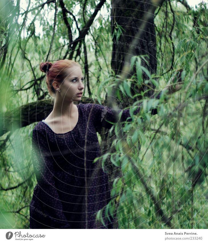 miss. feminin Junge Frau Jugendliche 1 Mensch 18-30 Jahre Erwachsene Schönes Wetter Pflanze Baum Sträucher Wald Kleid rothaarig Zopf natürlich schön Zweig Ast