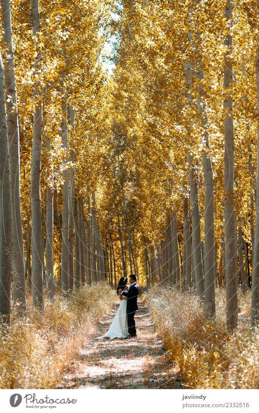 Nur ein Ehepaar in Pappelholz zusammen. Glück schön Feste & Feiern Hochzeit Mensch Junge Frau Jugendliche Junger Mann Erwachsene Paar 2 18-30 Jahre Blume Kleid