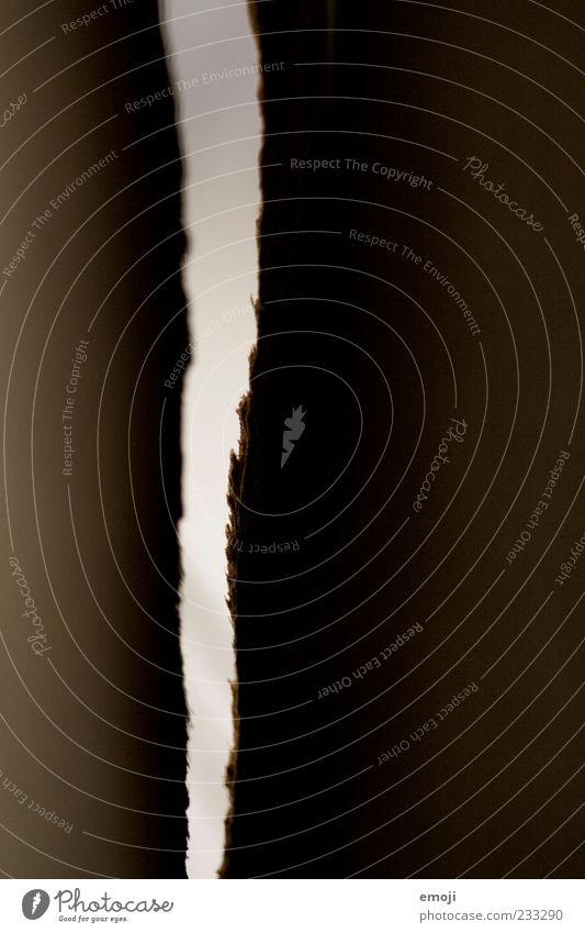 abstrakt braun Holz Nahaufnahme Detailaufnahme Makroaufnahme Holzspalte ausgefranst Textfreiraum rechts Hintergrund neutral Silhouette Gegenlicht
