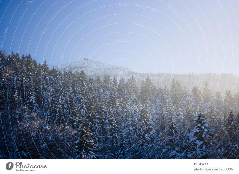 schön Himmel Baum Winter Haus Schnee Berge u. Gebirge Landschaft Eis Deutschland Europa Frost Tourismus Alpen Gipfel