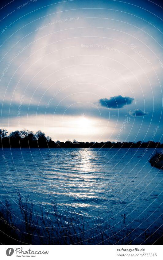 Atomic Sunset Umwelt Natur Landschaft Urelemente Wasser Himmel Wolken Horizont Klima Wetter Unwetter Pflanze Baum Wellen Küste Seeufer Flussufer Teich