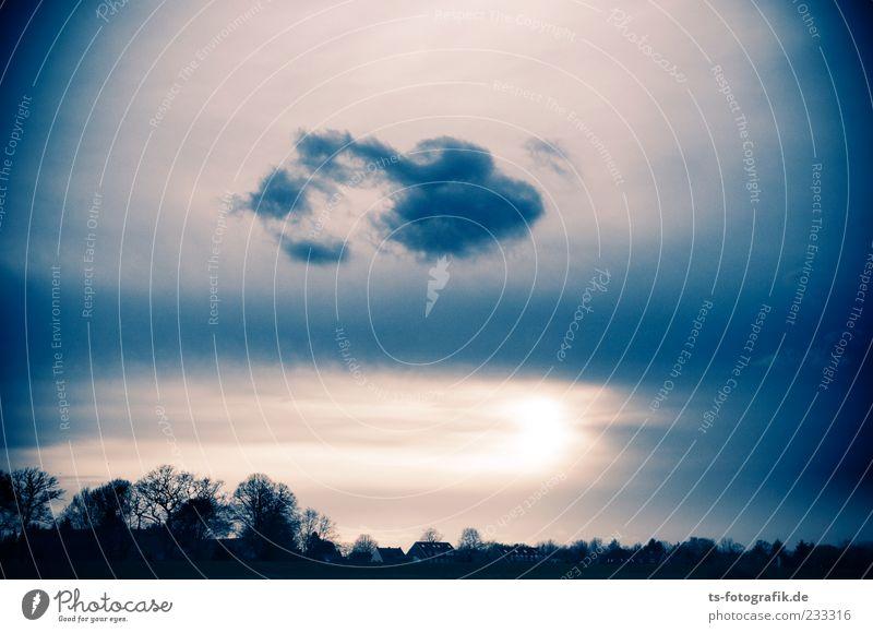 Atomic Sunset II Himmel Natur blau Baum Pflanze Sonne Wolken schwarz Ferne Umwelt dunkel Landschaft Luft Horizont Wetter Wind
