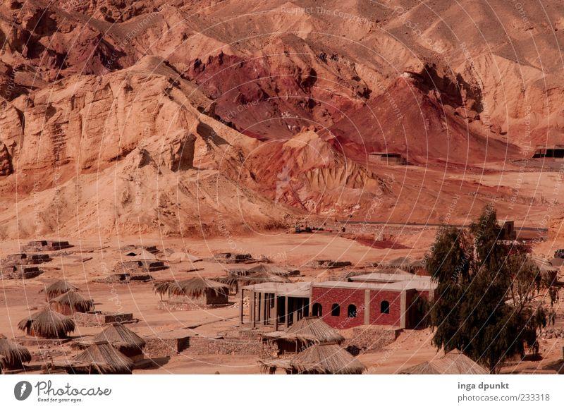 Roter Sand am Roten Meer Natur rot Ferien & Urlaub & Reisen Umwelt Landschaft Berge u. Gebirge Felsen Abenteuer Tourismus außergewöhnlich Reisefotografie